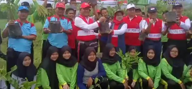 Hijaukan Bumi, Bupati Brebes Tanam Pohon Hari Jadi Ke 342 Kabupaten Brebes