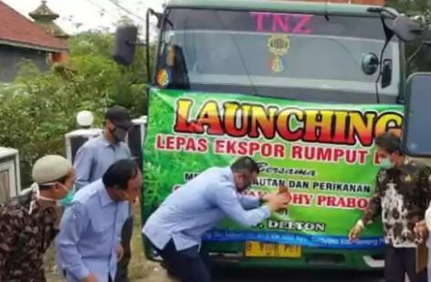 Menteri Edhy Lepas Ekspor 53,5 Ton Rumput Spinosium ke Vietnam
