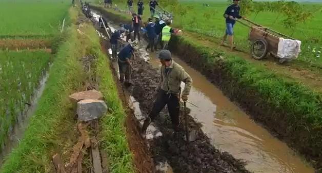 Program Padat Karya di 900 Kecamatan untuk Dukung Produktivitas Pedesaan